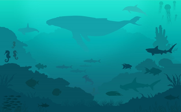 Ocean fish background