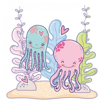 Octopus couple animals with heart and seaweed plants