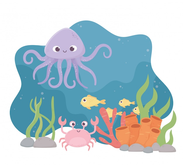 Octopus crab fishes life coral reef cartoon under the sea