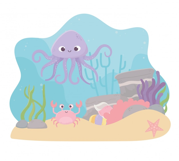 Octopus crab starfish life coral reef cartoon under the sea