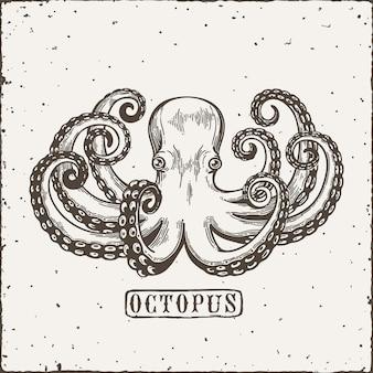 Octopus engraving. vintage black engraving illustration. retro style card. isolated on white background.