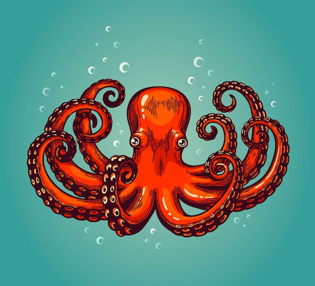 Octopus engraving. vintage color engraving color illustration. retro style card. red octopus on blue background.