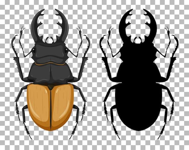 Odontolabis elegans с его силуэтом, изолированным на прозрачном фоне