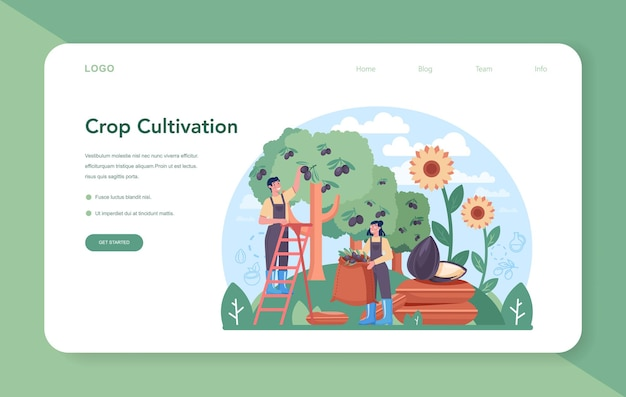 Oil extraction or production industry web banner or landing page. vegatable oil. organic vegetarian ingredient for cooking and non-edible production. vector flat illustration