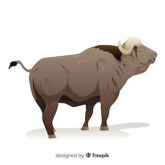 Old buffalo cartoon illustration