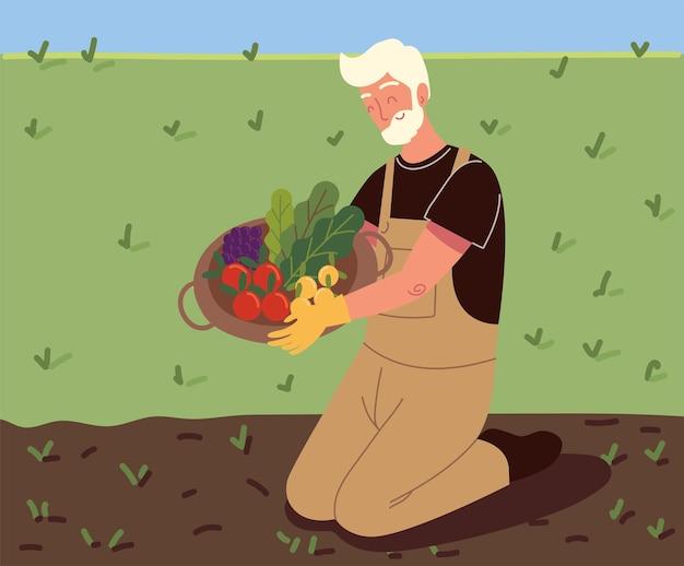 Старик собирает овощи