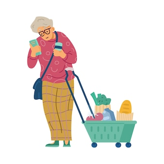 Old woman with shopping basket on wheels flat vector illustration isolated