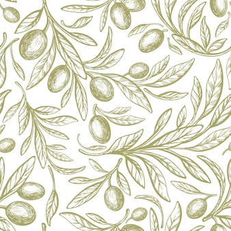 Oliva green seamless pattern vector hand drawn tree fruit texture foliage on white background nature