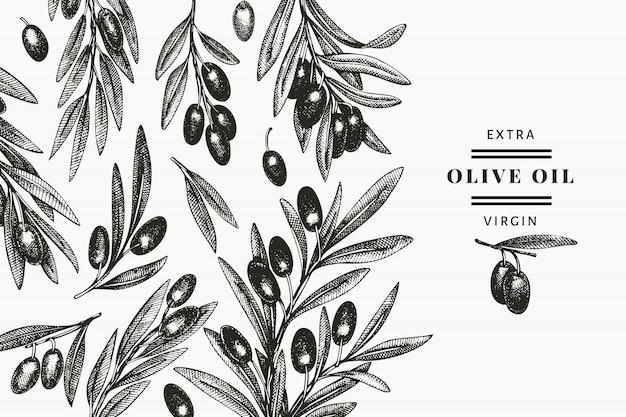 オリーブの枝のデザインテンプレートです。手描きの食べ物イラスト。刻まれたスタイルの地中海の植物。レトロな植物の写真。