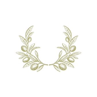 Olive branch rustic wreath texture fruit green foliage nature round symbol hand drawn illustration
