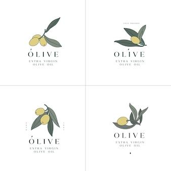 オリーブの枝-シンプルな線形スタイル。オリーブとタイポグラフィのロゴ構成。
