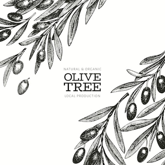 Olive branch  template. hand drawn  food illustration. engraved style mediterranean plant. retro botanical picture.