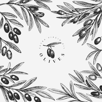 オリーブの枝のテンプレート。手描きの食べ物イラスト。刻まれたスタイルの地中海植物。レトロな植物写真。