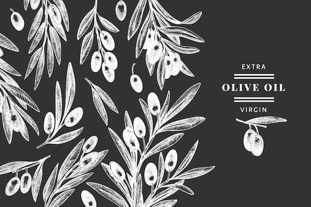 オリーブブランチテンプレート。チョークボードに描かれた食べ物のイラストを手します。刻まれたスタイルの地中海の植物。レトロな植物の写真。