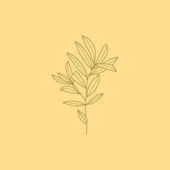 Оливковая ветвь с листьями. наброски ботанических листьев в современном минималистском стиле. векторные иллюстрации. для печати на футболках, веб-дизайна, салонов красоты, постеров, создания логотипа и др.