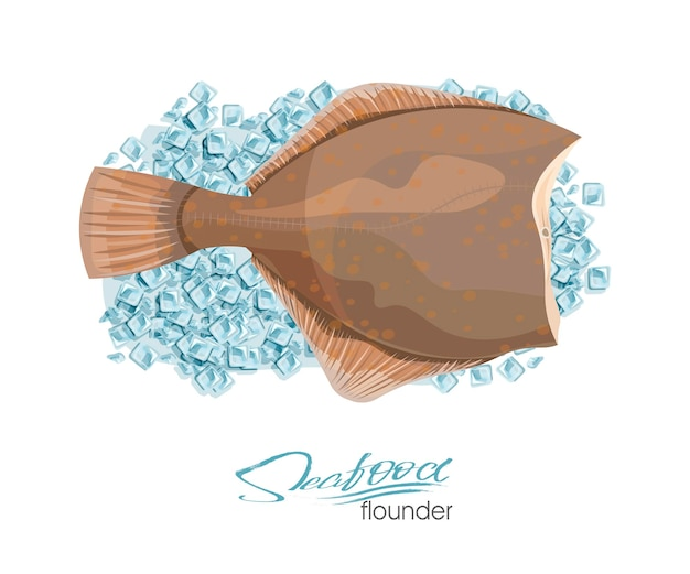 Olive flounder vector illustration sea fish on ice cubes isolated on white background