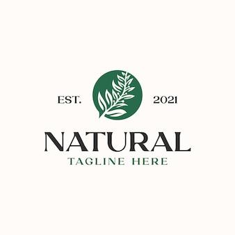 Шаблон логотипа оливковых листьев, изолированные на белом фоне