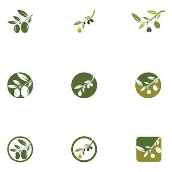 Шаблон оливкового логотипа