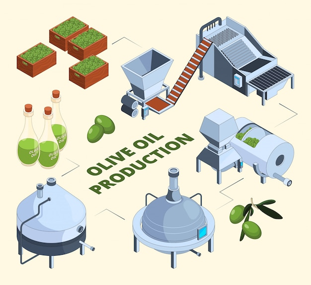Olive manufacturing. oil production processes plant food press industry farm tank centrifuge bottles.  isometric pictures