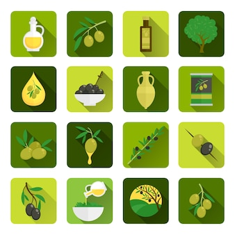 Olive oil icons in green tones
