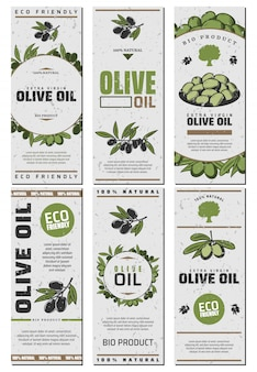 Olive oil packaging templates design set with text green and black olives in vintage style