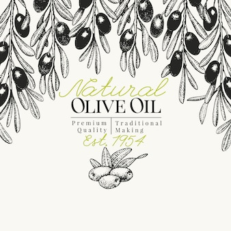 Olive tree banner template. vector retro illustration. hand drawn engraved style background