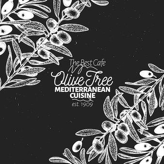 Olive tree banner template. vector retro illustration.
