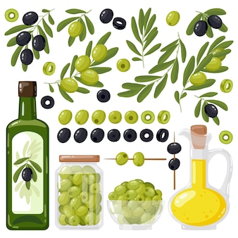 Olive tree branches and extra virgin olive oil