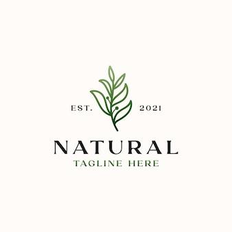 Шаблон логотипа зеленый градиент оливкового дерева, изолированные на белом фоне