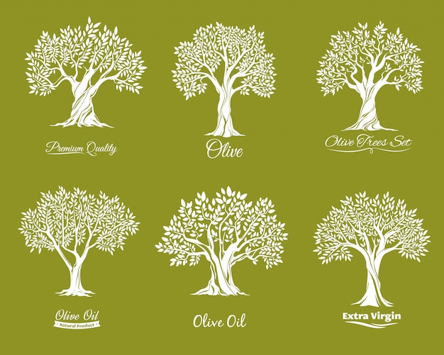 Olive trees farm  icons set