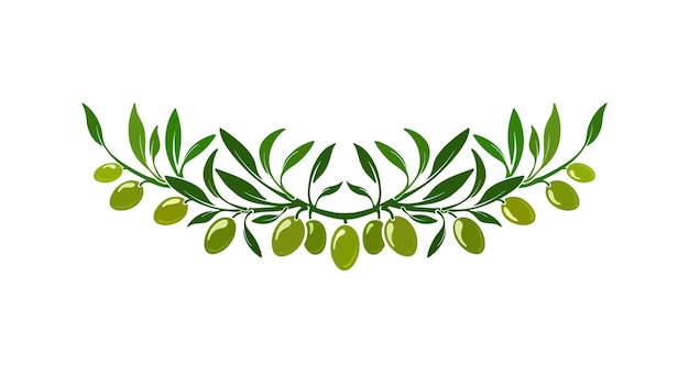 Olive wreath ornament with green leaves fresh fruits organic italy pattern nature border
