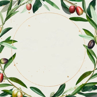 Olive wreath with a gold frame design element vector