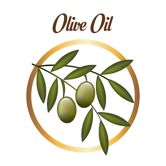 Olives design over white background vector illustration