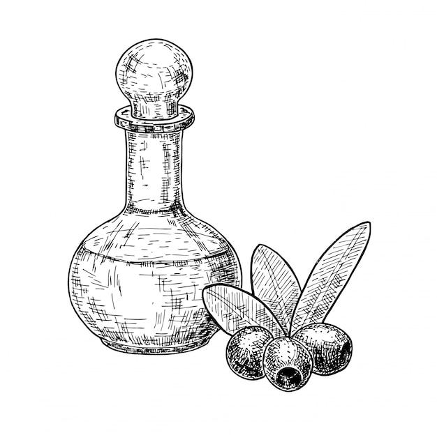オリーブフルーツとオリーブオイルのボトルスケッチセット。手が白い背景のイラストを描いた。