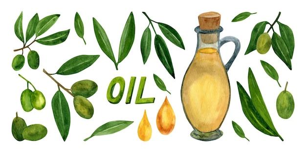 イタリア料理のデザインやエクストラバージンオイルのためのオリーブの枝と果物がセットされたオリーブ
