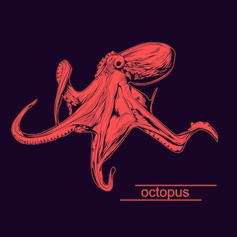 One color octopus illustration