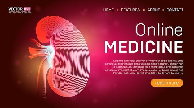 Шаблон целевой страницы онлайн-медицины или концепция дизайна баннера медицинского героя. человеческая почка контурный орган в стиле 3d линии на абстрактном фоне