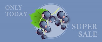 Only today super sale banner design with black currant berries in round frame
