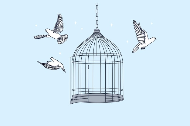 Открытая клетка с летающими изнутри голубями птицами