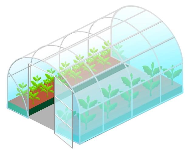 흰색 절연 등각 투영 뷰에서 녹색 식물을 가진 온실 유리를 엽니 다