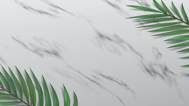 Open space in the form of a marble surface. 3d banner with decorative palm leaves