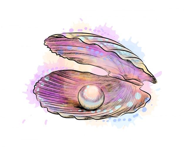 Раскрытая раковина с жемчужиной внутри от брызг акварели