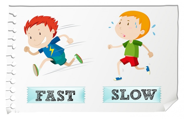 Opposite adjectives with fast and slow