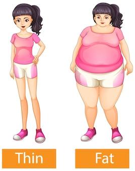 Напротив прилагательных слова с тонким и толстым