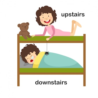 Opposite downstairs and upstairs vector illustration
