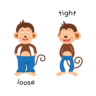 Opposite  loose and tight illustration