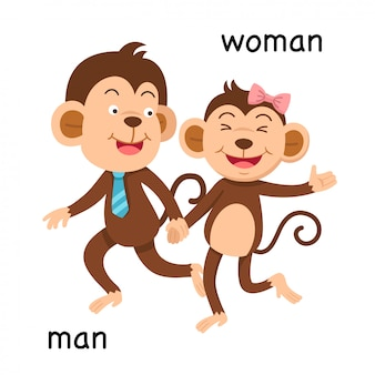 Opposite man and woman illustration