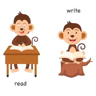 Opposite read and write  illustration