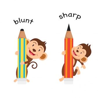Opposite sharp and blunt illustration