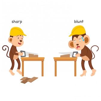 Opposite sharp and blunt vector illustration